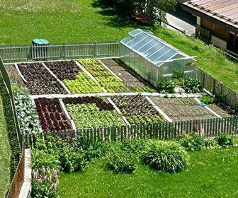 Gemüsegarten anlegen